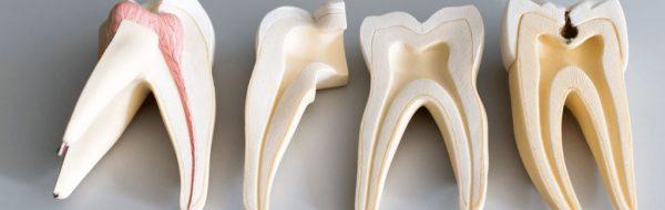 bahçelievler endodonti doktoru, klinik afm bahçelievler kanal tedavisi işlemleri